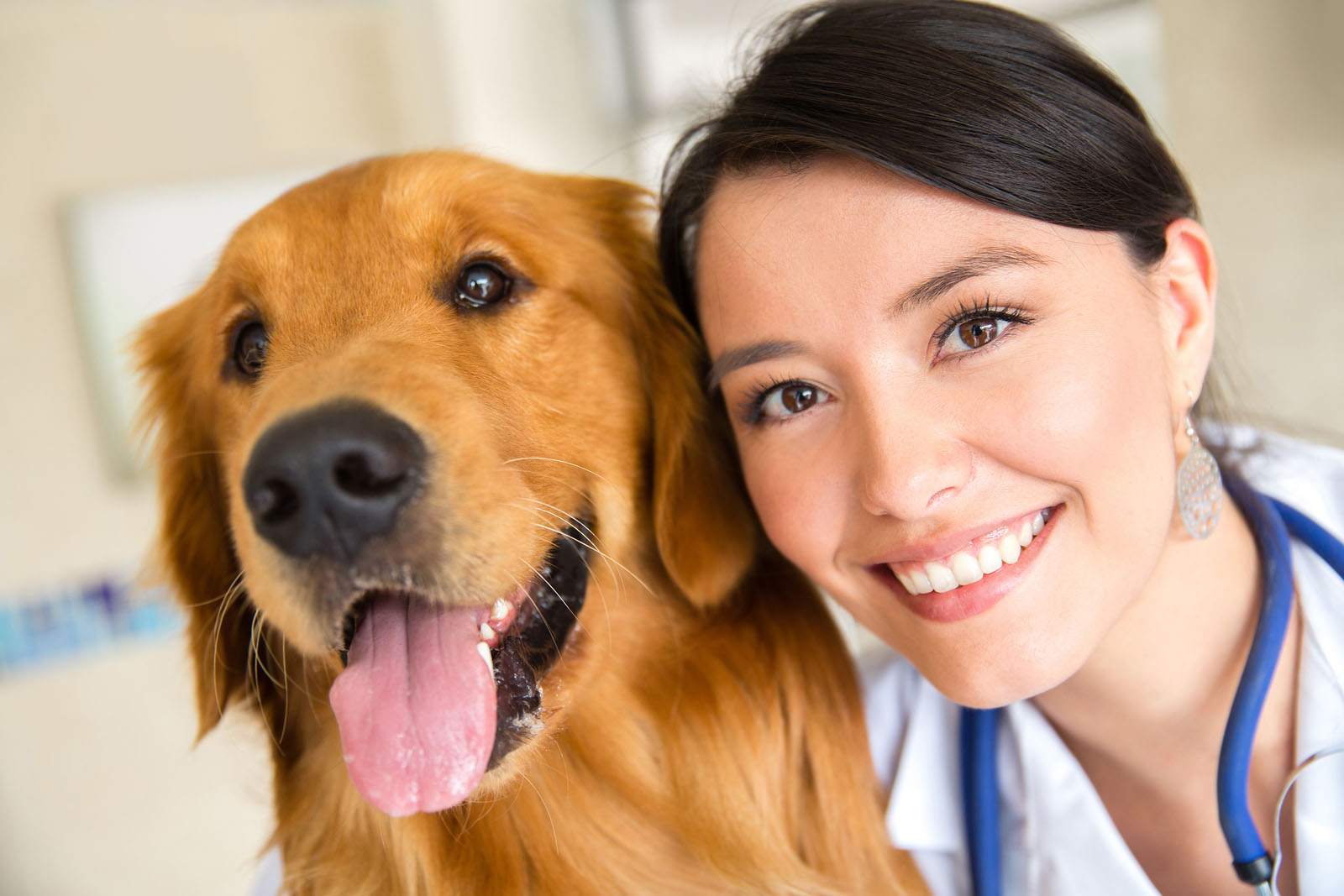 Veterinarian with a happy pet